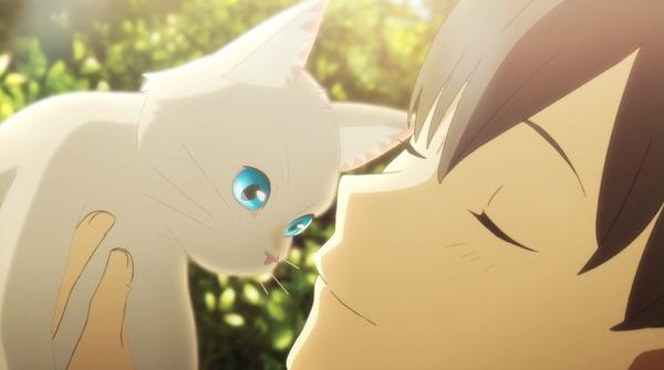 泣きたい私は猫をかぶるの画像 p1_25