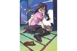 「化物語 つばさキャット」 ニコ動で2夜連続配信 キャラクターコメンタリー版に注目 画像