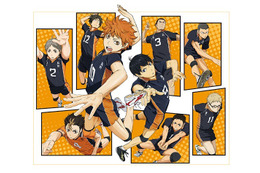 2014年4月スタート「ハイキュー!!」 細谷佳正、岡本信彦、内山昂輝、斉藤壮馬も出演 画像