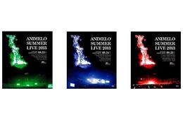 「アニサマ2013」イベント史上初の3日間を、BD/DVDでほぼ完全収録 画像