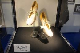 「言の葉の庭」、タカオがユキノの贈った靴はここにあった AnimeJapanコミックス・ウェーブ ブース 画像