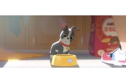「ベイマックス」と「愛犬とごちそう」ディズニー同時上映作品が米国アカデミー賞ダブル受賞 画像
