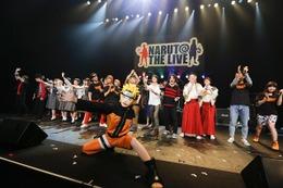 Aqua Timez、乃木坂46、FLOWが熱唱!「NARUTO THE LIVE Vol.0」レポート 画像