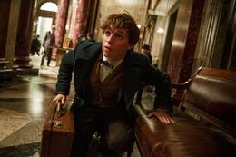 「ファンタスティック・ビーストと魔法使いの旅」初の劇中シーン公開 ハリポタと同じ魔法の世界が舞台 画像
