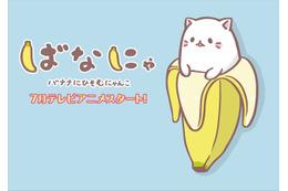 主人公は梶裕貴、「ばなにゃ」2016年7月よりTVアニメ放送開始 バナナに潜むにゃんことは? 画像