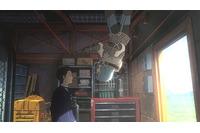(c)Yasuhiro YOSHIURA/Sakasama Film Committee 2013