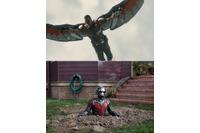 """映画「アントマン」 史上最小のマーベルヒーローがファルコンに""""鉄拳パンチ"""" 画像"""