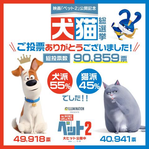 『ペット2』犬猫総選挙(C)Universal Studios.