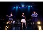 薄桜鬼とAMNESIAのファン熱狂、 ZEPP TOKYOで吉岡亜衣加と織田かおりが夢のコラボ