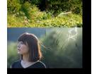 花澤香菜が地上波初の生出演 日本テレビ「スッキリ!!」で「こきゅうとす」披露