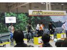 ニコニコ超会議2015「超アニメエリア」レポート 心がぴょんぴょんからアイマス、「SHIROBAKO」まで