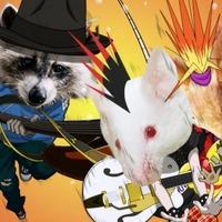 サンライズ制作、異色アニメ「森のおんがくだん」配信スタート 公式サイトもオープン 画像