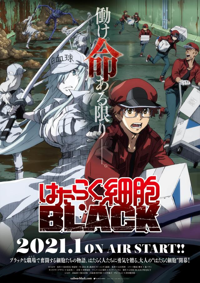 『はたらく細胞BLACK』キービジュアル(C)原田重光・初嘉屋一生・清水茜/講談社・CODE BLACK PROJECT