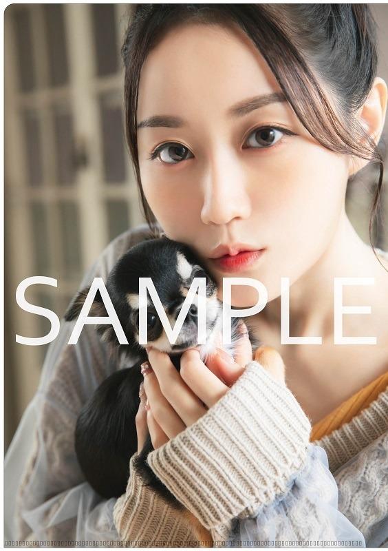 『Yui-can!』アニメイト特典クリアファイル(C)Shufunotomo Infos Co.,Ltd. 2020