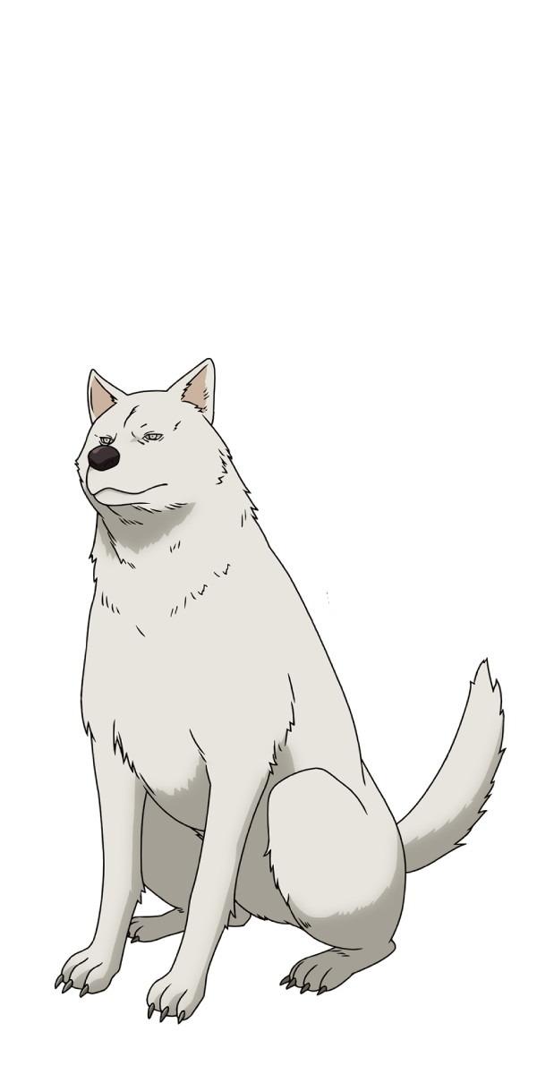 『ピーチボーイリバーサイド』犬(C)クール教信者・ヨハネ/講談社/「ピーチボーイリバーサイド」製作委員会