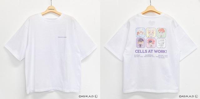 はたらく細胞 バックプリントTシャツ M・L(C)AS/K,A,D(L)